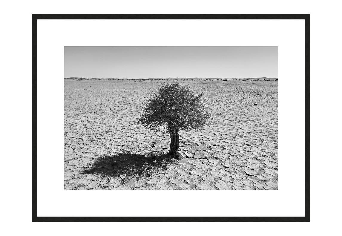 Spirit of Perseverance with frame, Desert Stories Series (Photo Edition), Nik Barte
