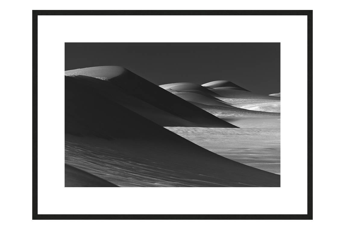 The Pack Survives with frame, DUNES Unveiled Beauties Series, Nik Barte