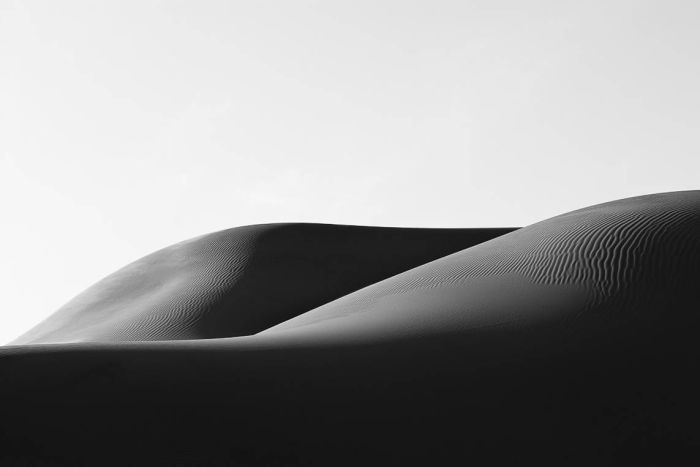 ARTWORKS | Gallery REVERSE BODYSCAPES 2019 - NIKBARTE - THE ELEPHANTS