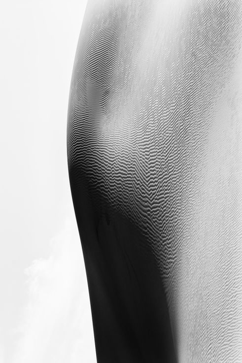 Good Vibes, Reverse Bodyscapes Series, Nik Barte